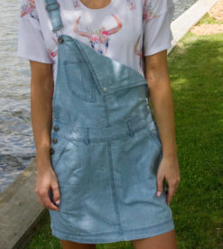 Favorite Overall Dress 1