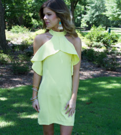 Sunny Date Dress 4