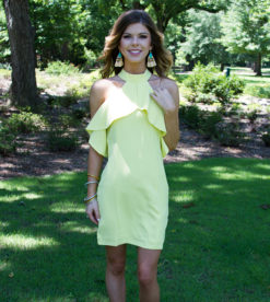 Sunny Date Dress 8