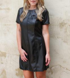 Little Black Leather Dress 3
